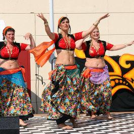 Danzion var en dansfest med workshops och uppträdanden som Subfuzion anordnade 2007.